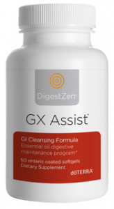 GX Assist
