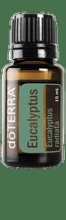 Eucalyptus doterra